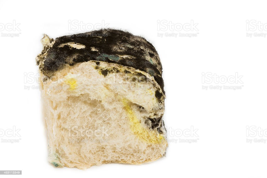 Moldy bread isolated on white royalty-free stock photo