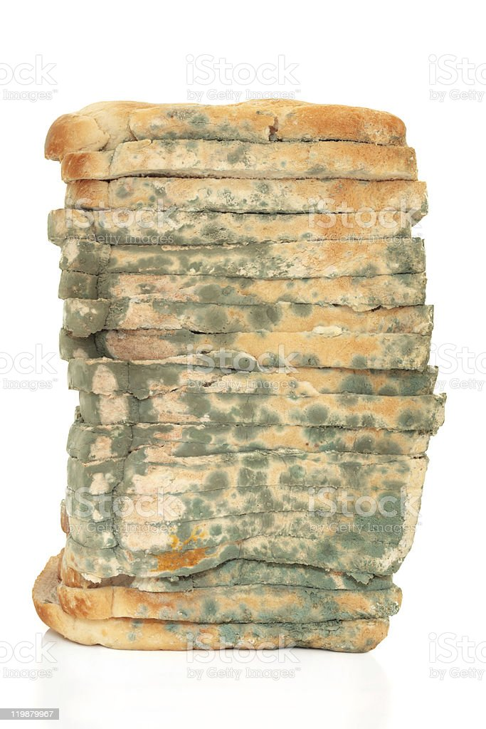 Moldy Bread Loaf royalty-free stock photo