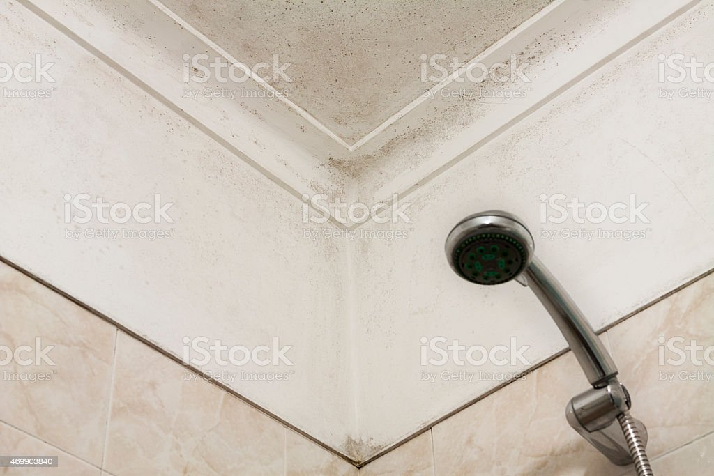 Moldy corner in a shower room stock photo