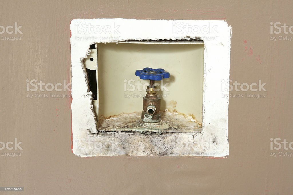 Moldy Icemaker Faucet stock photo