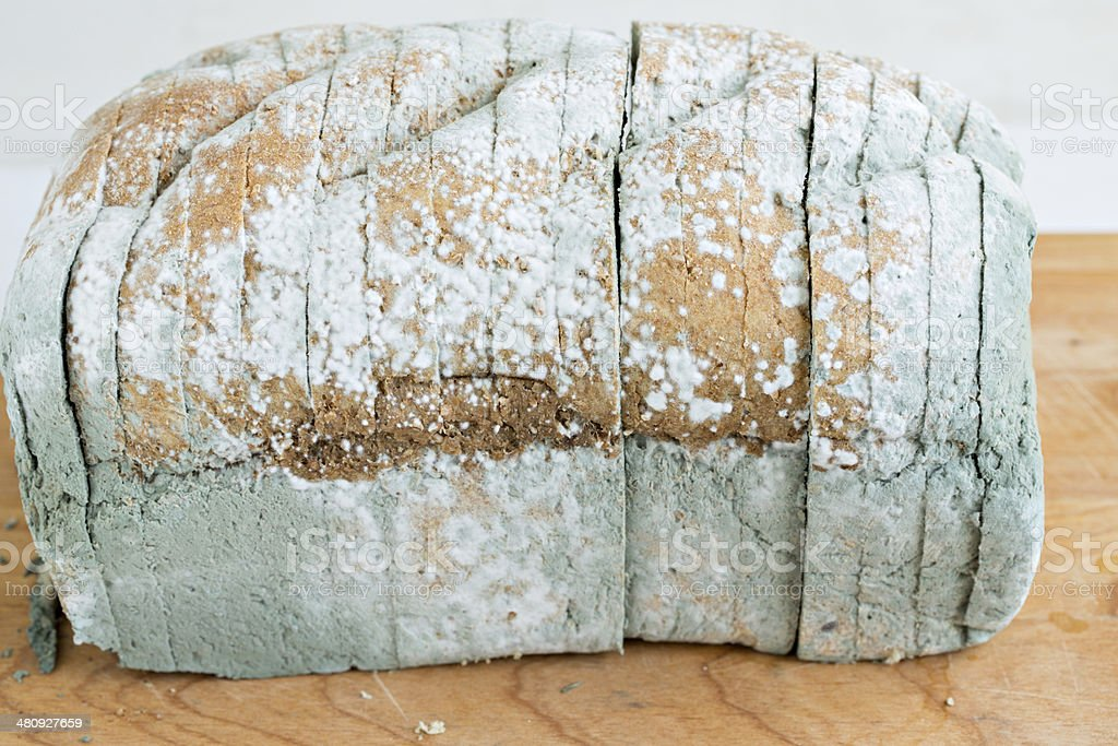 Moldy Loaf Of Bread royalty-free stock photo