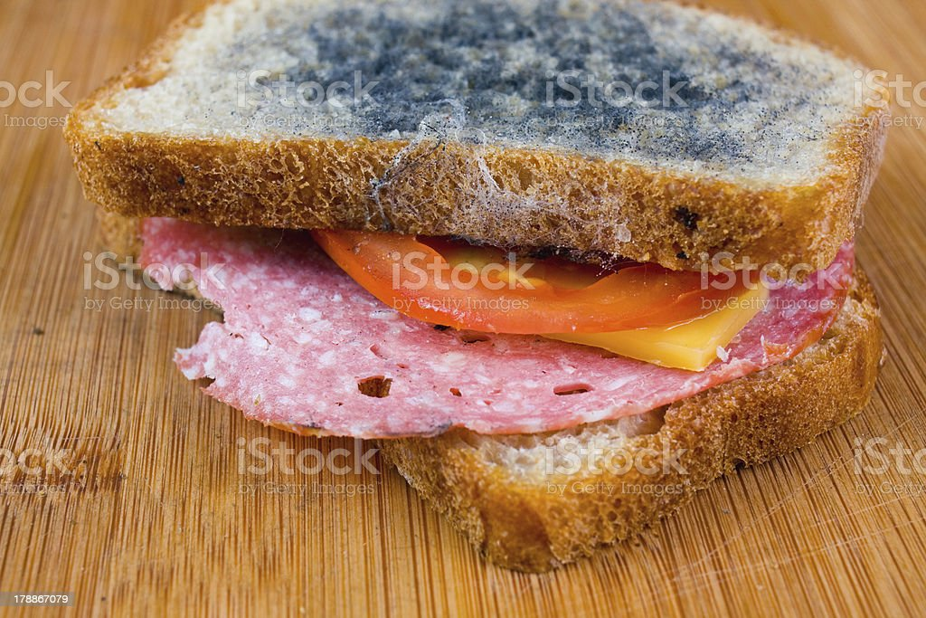 moldy sandwich with salami, tomatoes on a chopping board stock photo