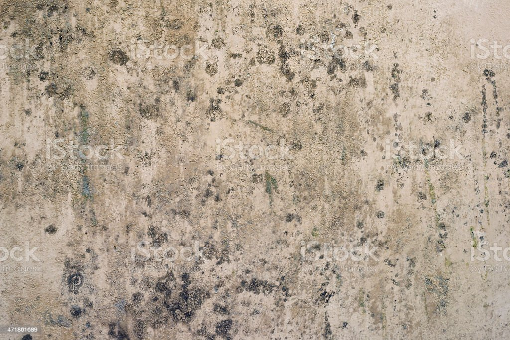 Moldy Spotted Rough Grainy Abstract Surface Background Texture royalty-free stock photo