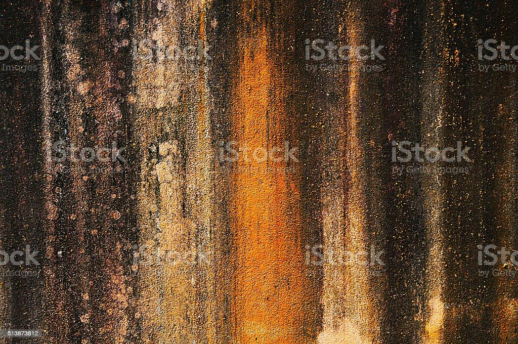 moldy wall stock photo