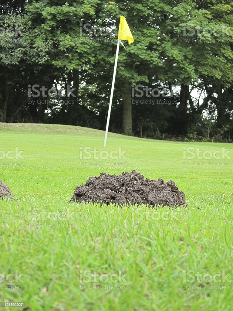 Mole hill beside the green on a golf course stock photo