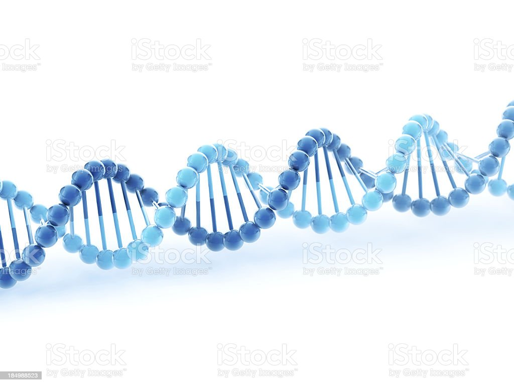 DNA Molecular Structure royalty-free stock photo