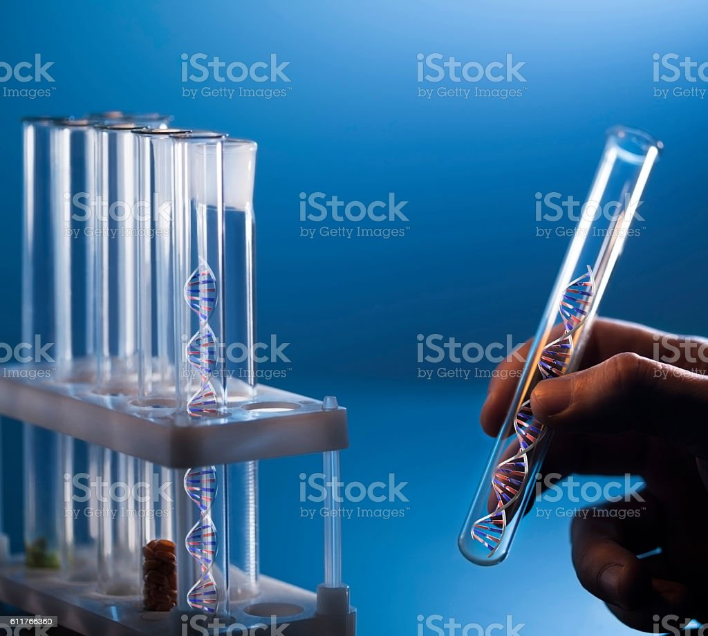 DNA molecule in glass tube in hand of scientist stock photo
