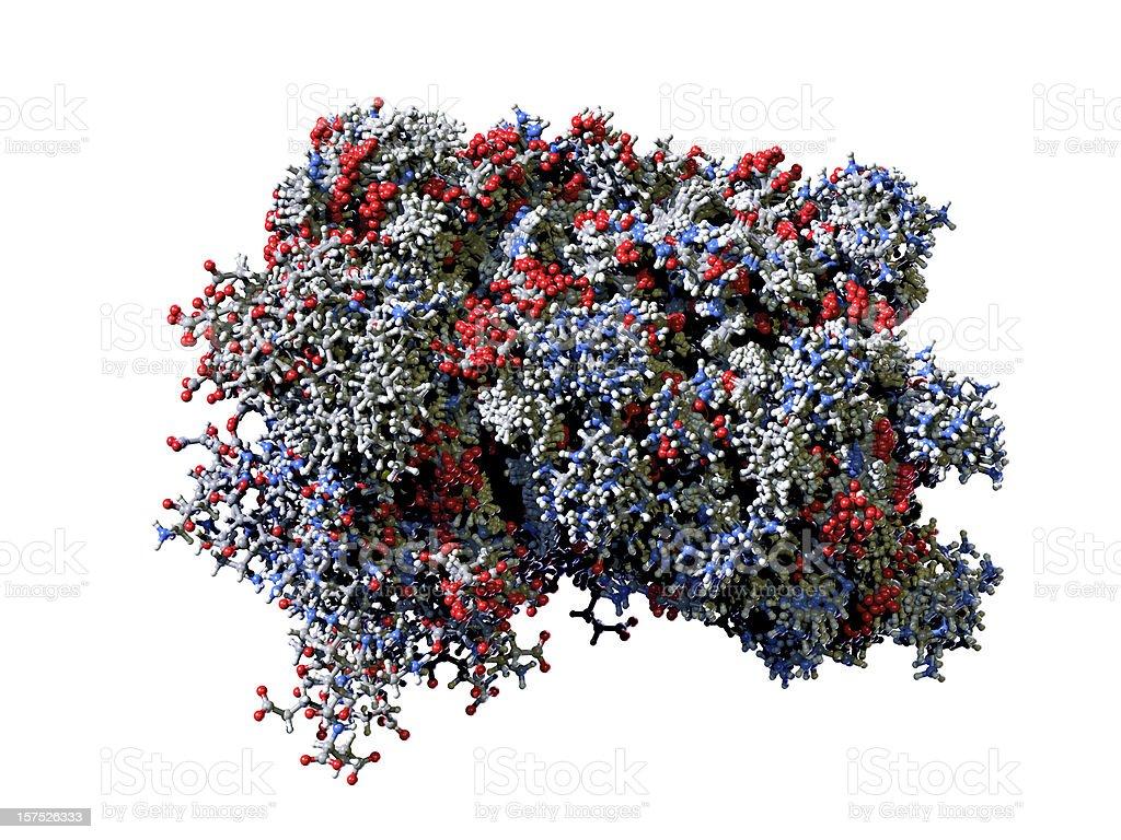 Molecule of Human Interferon stock photo