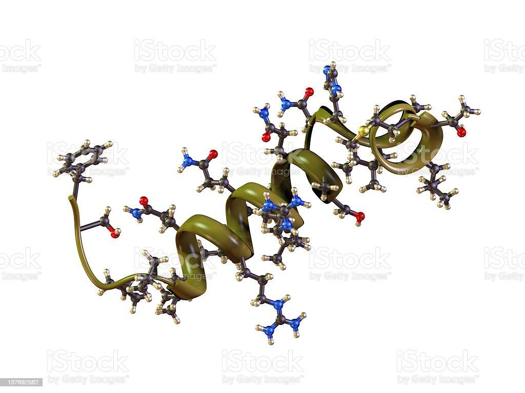 Molecule of Orexin stock photo