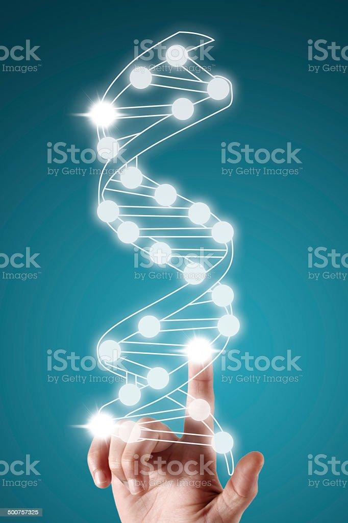 DNA molecule royalty-free stock photo