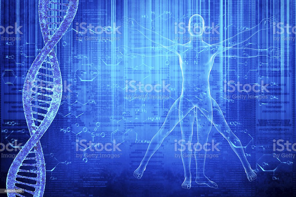 DNA molecules and virtuvian man stock photo