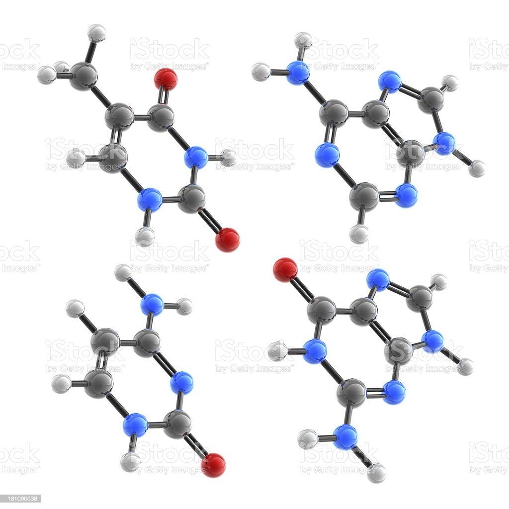 DNA Molecules royalty-free stock photo
