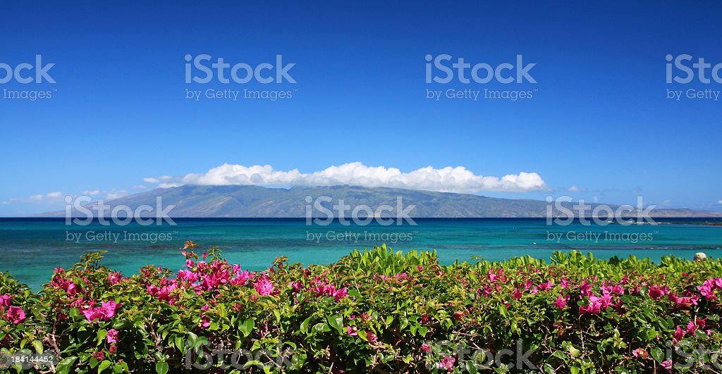 Molokai and flowers as seen from Maui Hawaii panorama stock photo