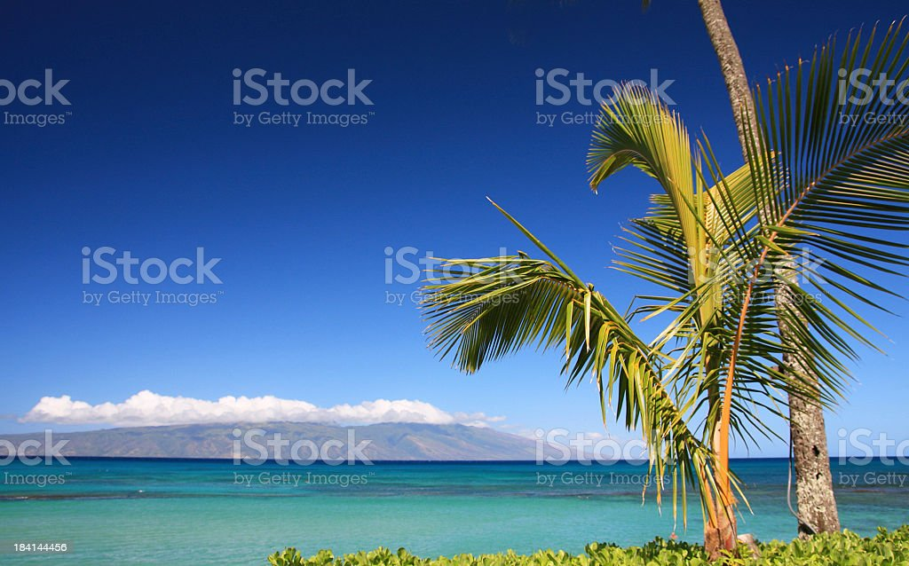 Molokai from Maui Hawaii, Pacific ocean and palm trees stock photo