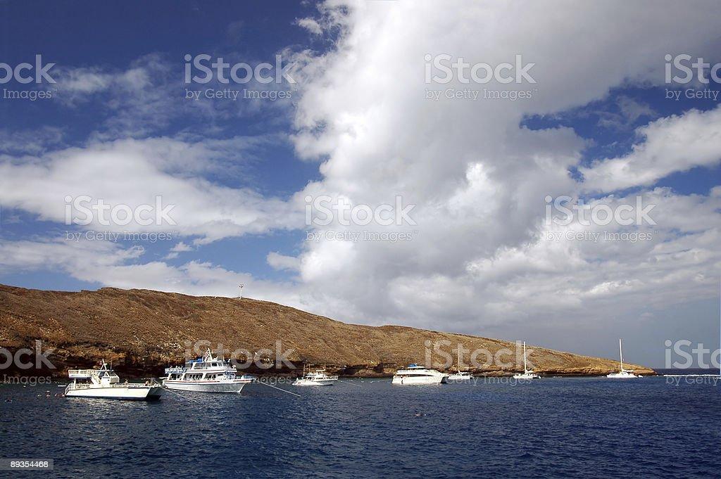 Molokini Reef stock photo