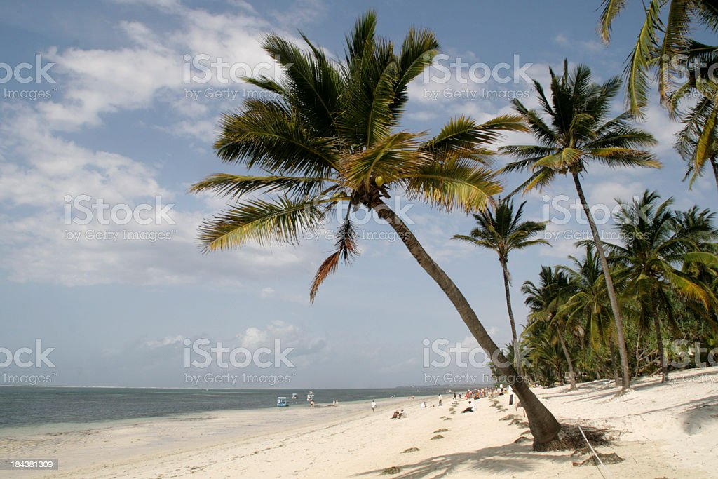 Mombasa beach stock photo
