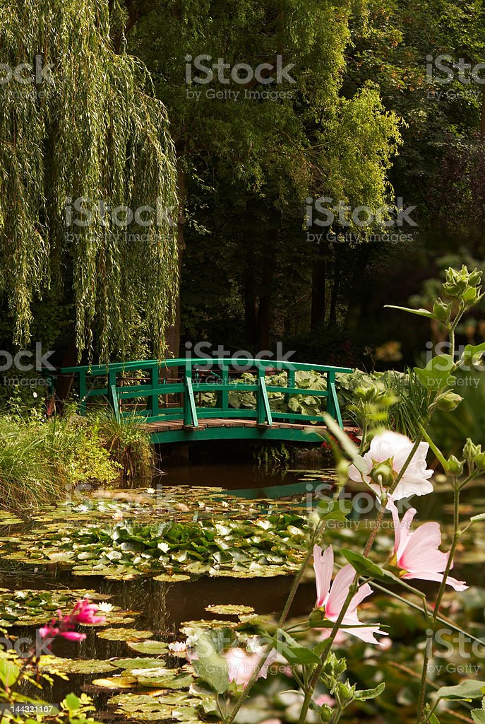 Monet's lilies stock photo