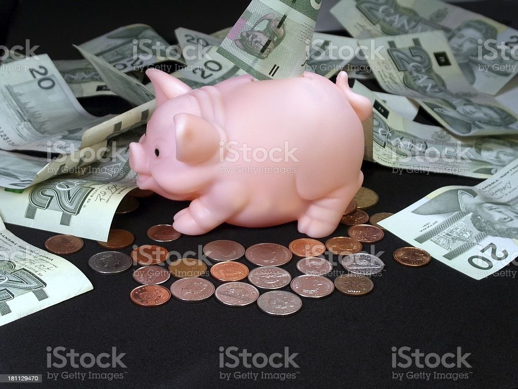 Money And Piggy Bank royalty-free stock photo