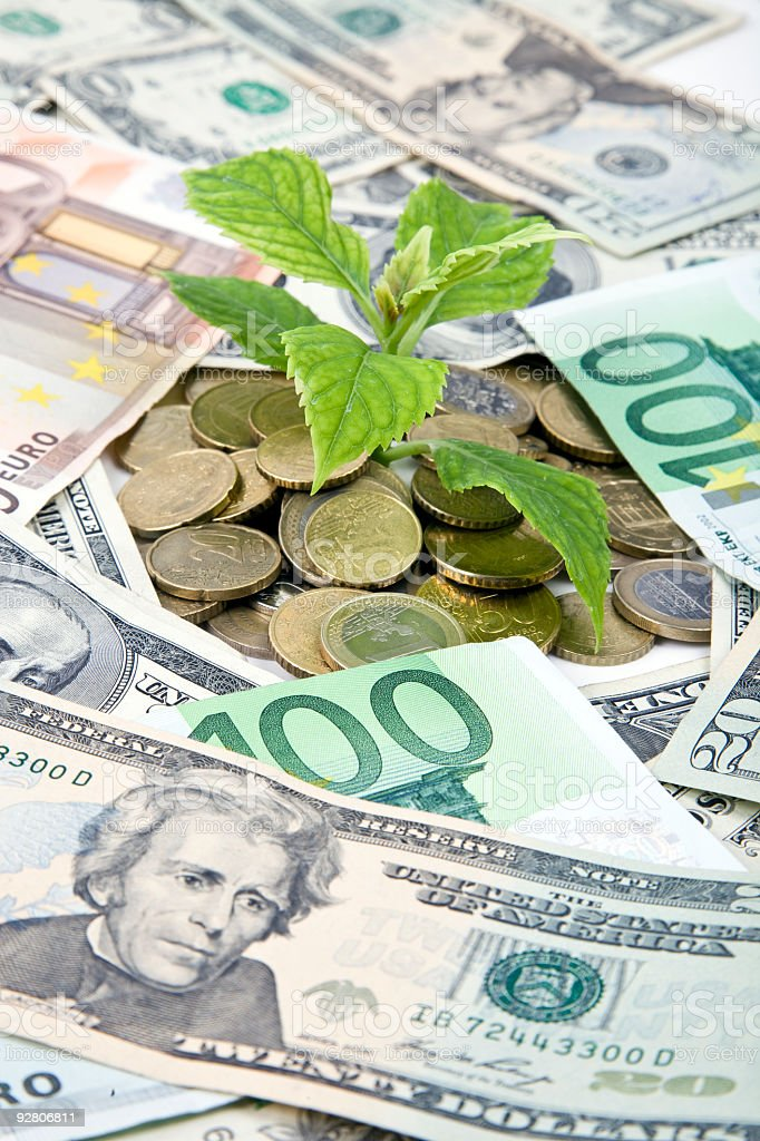 money and plant royalty-free stock photo