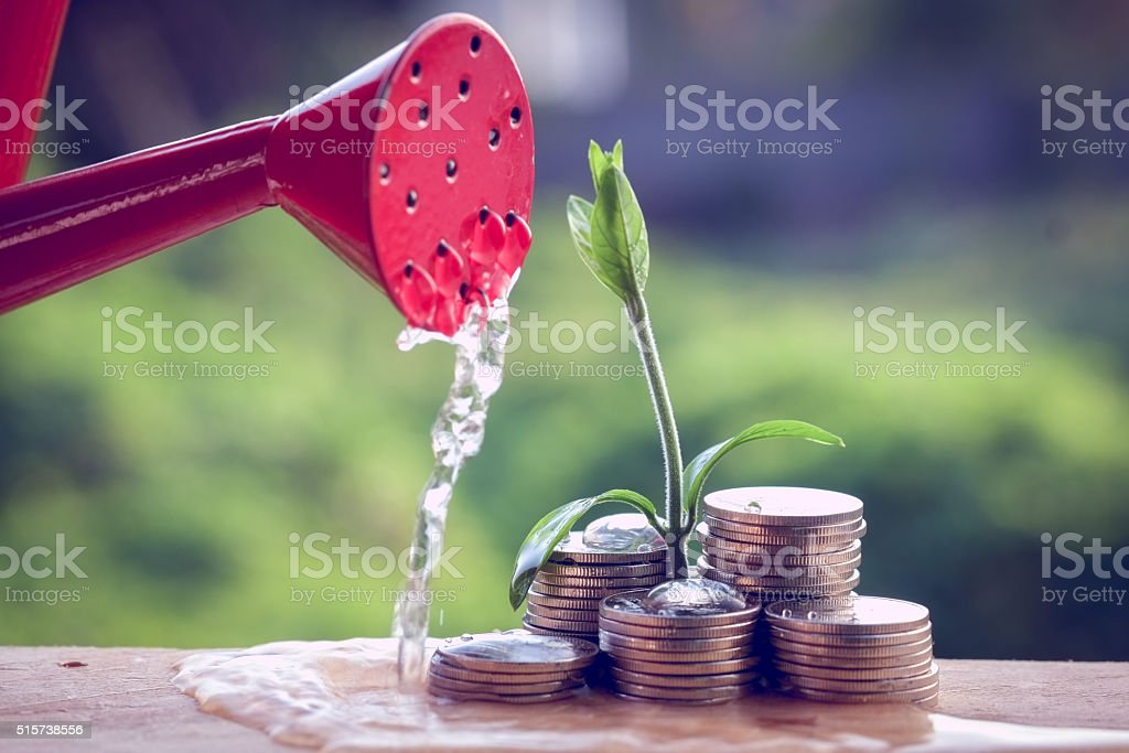 Money and plant with hand stock photo