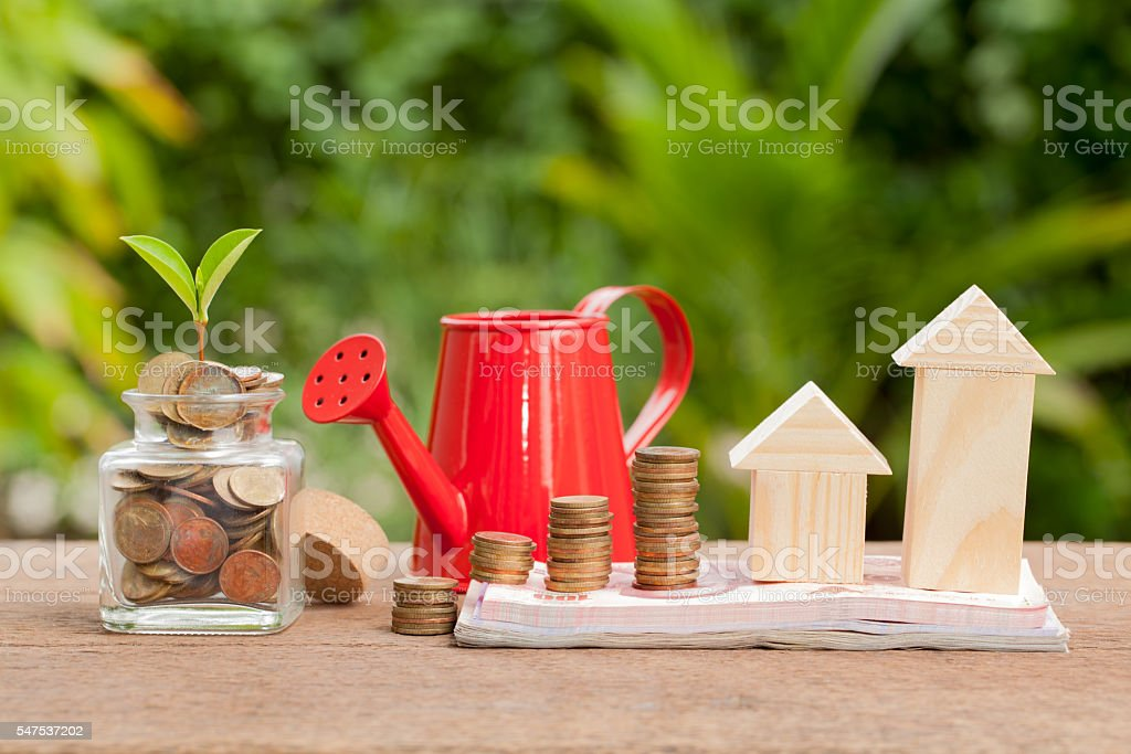 Money and plant with watering can and money tree, stock photo