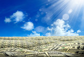 money covered land