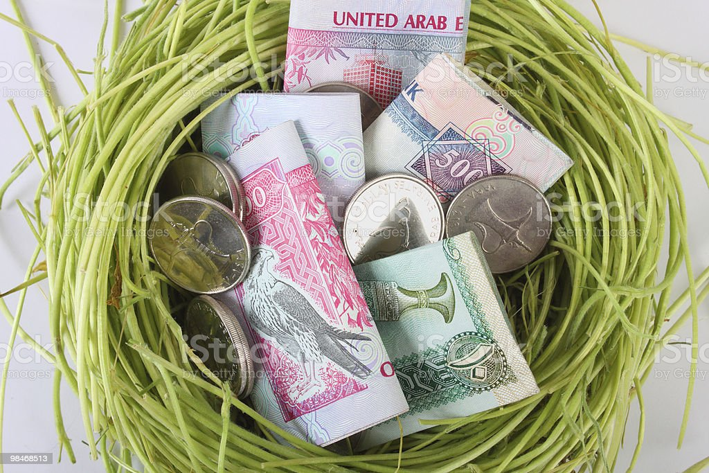 UAE money dirhams in a nest royalty-free stock photo