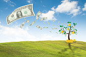 money dollar bills tree, concept growth business finance