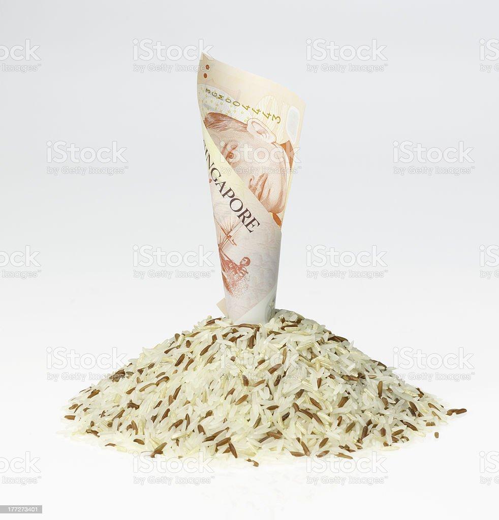 Money & food stock photo