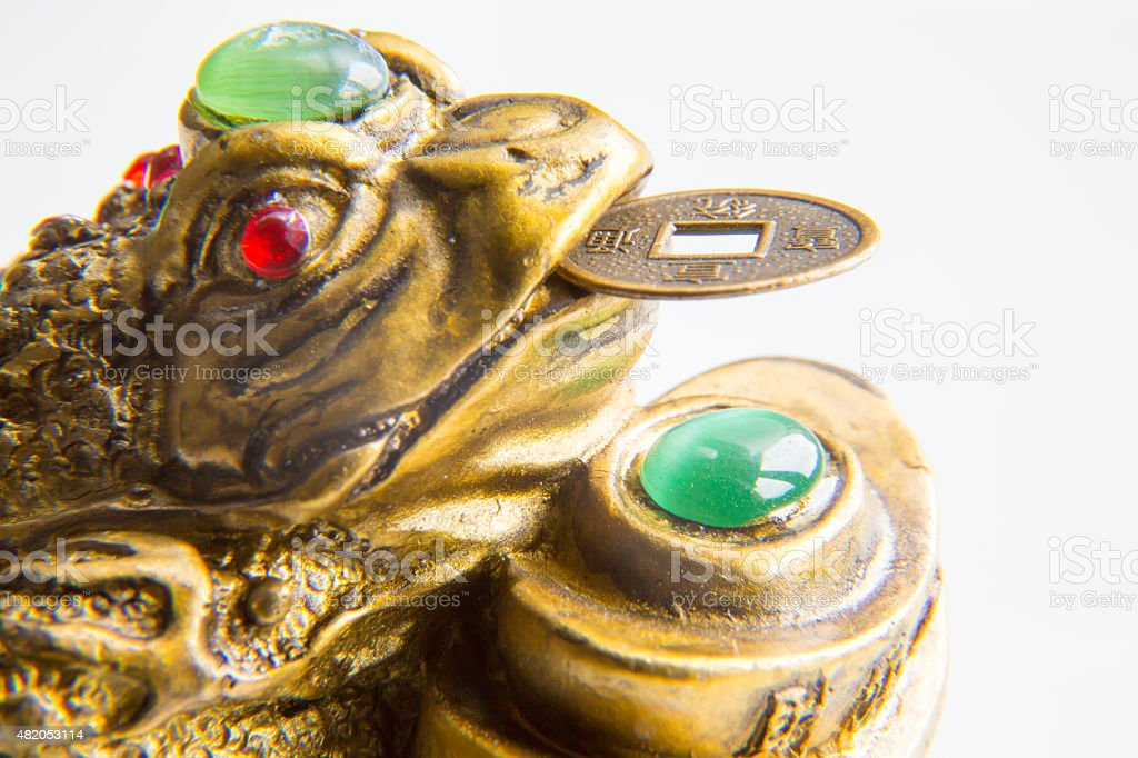 Money Frog with the coin symbolizing wealth and prosperity stock photo
