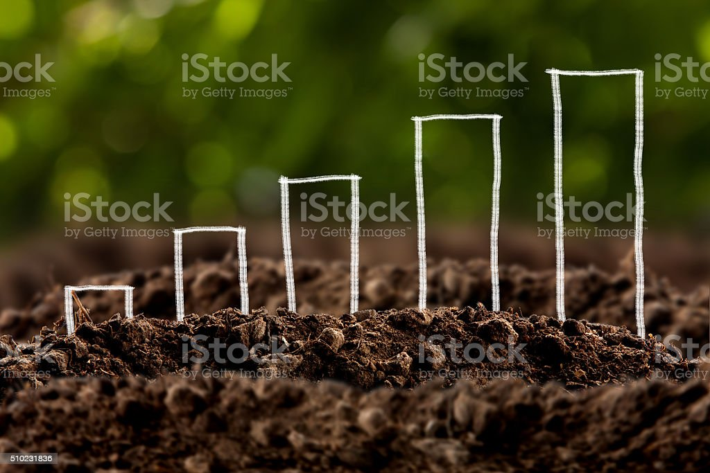 Money growing in soil , Business success concept. stock photo