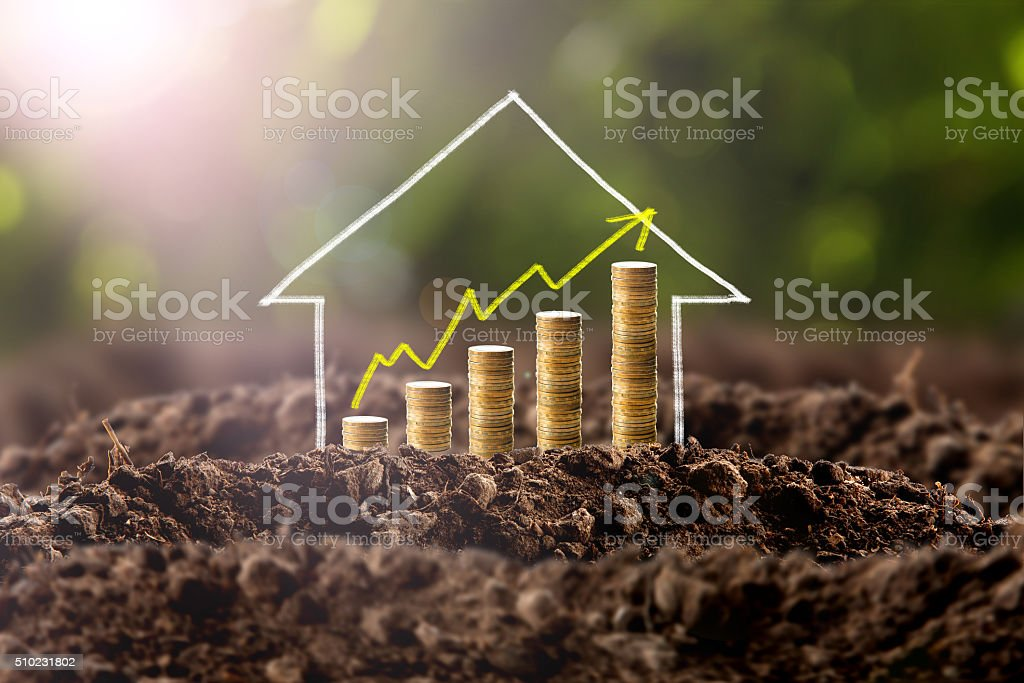 Money growing in soil with house stock photo