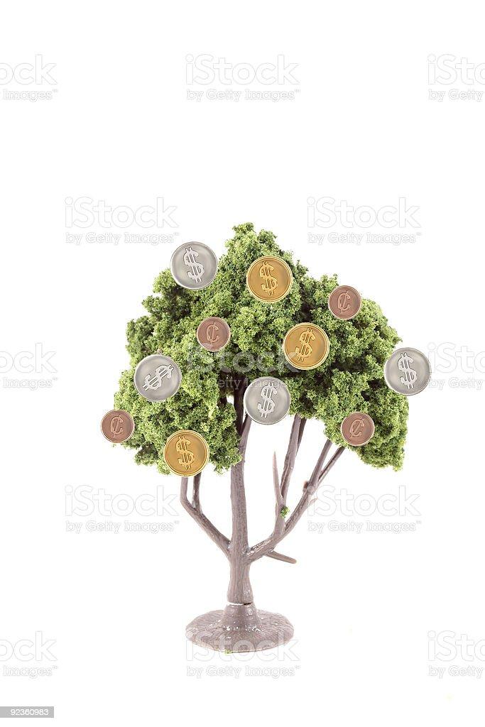 money growing on tree royalty-free stock photo