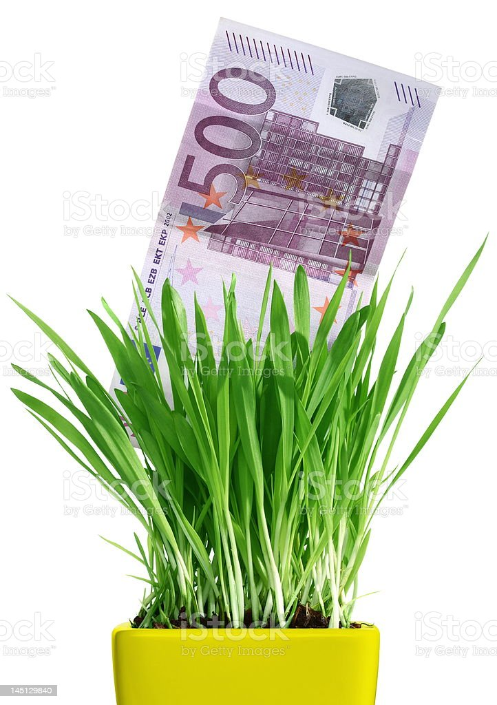 Money growing out of grass pot royalty-free stock photo