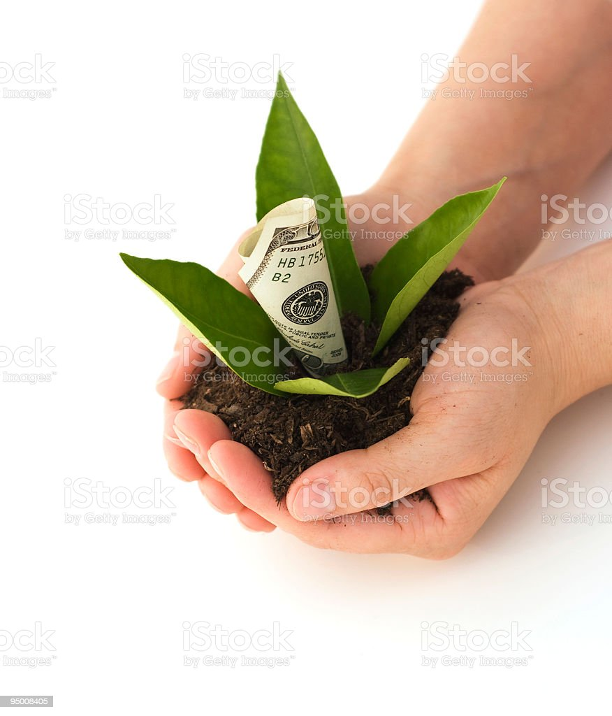 Money Growth royalty-free stock photo