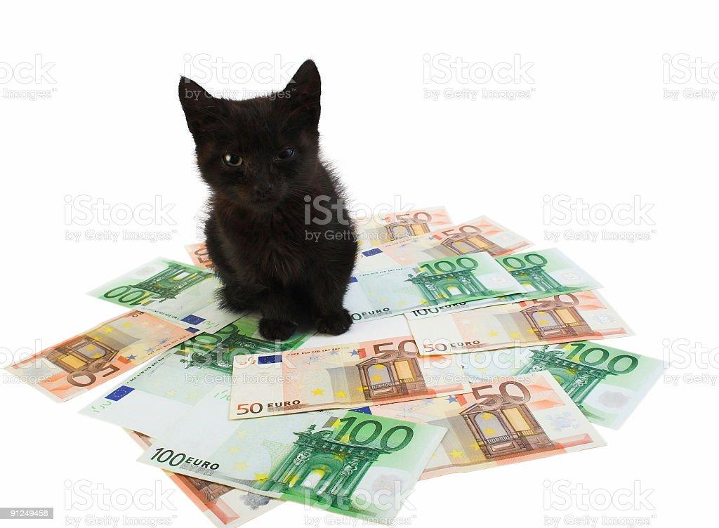 Money guard stock photo