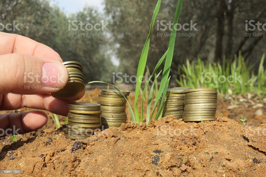 Money helps anything flourish! Seedling growing out of coins stock photo