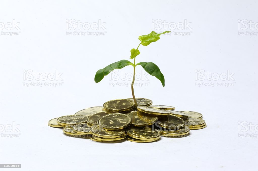 Money Investment Concept stock photo