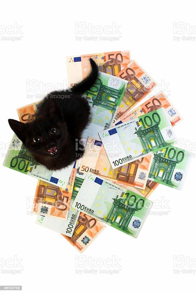 Money safe guard stock photo