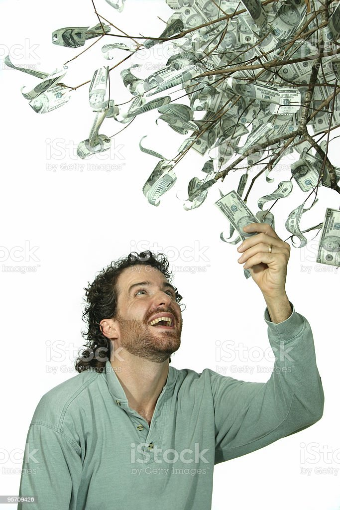 money tree 2 stock photo