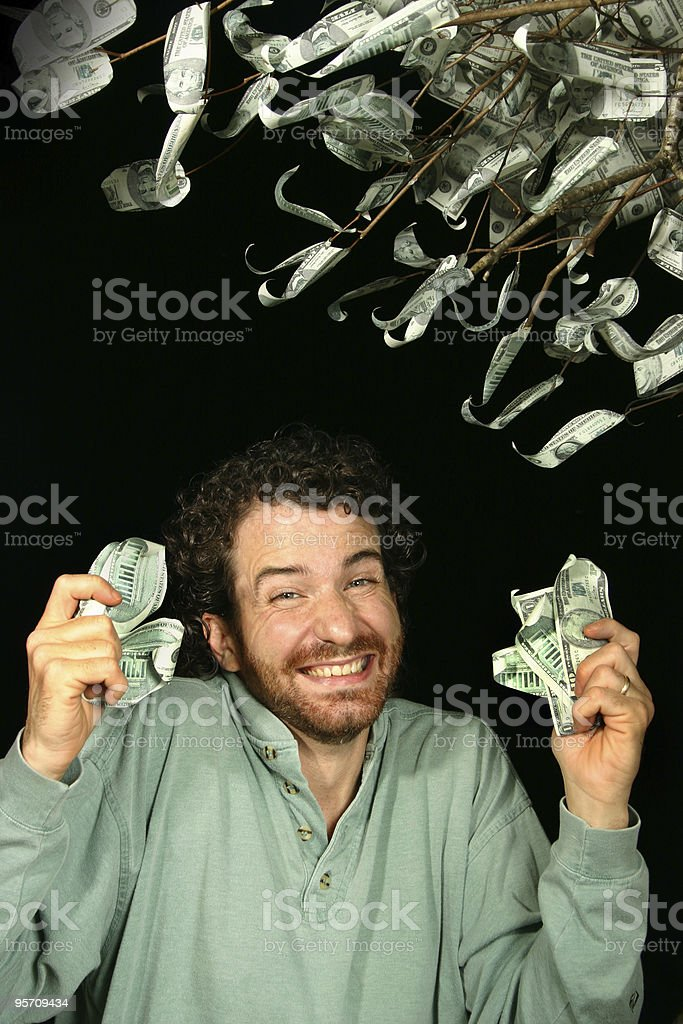 money tree 5 stock photo
