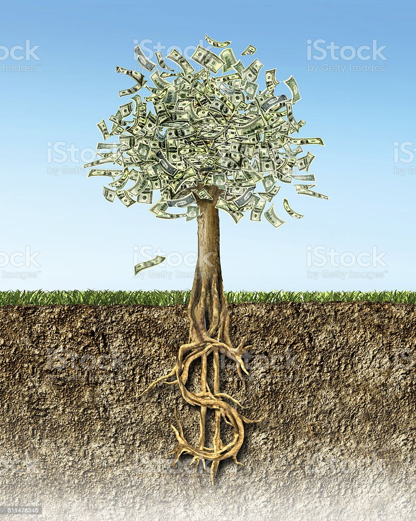 Money tree in soil section showing US Dollar sign roots. stock photo
