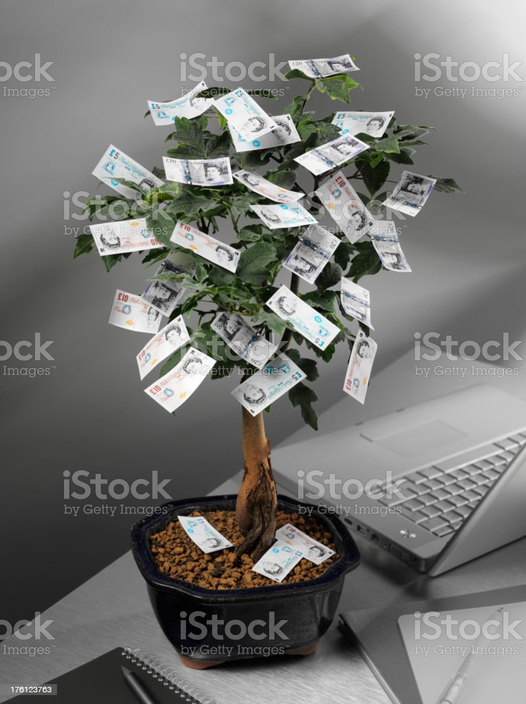 Money Tree with British Pounds royalty-free stock photo