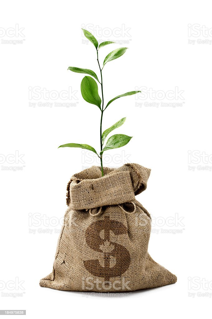 Money Tree/Money Bag With Canadian Dollars royalty-free stock photo