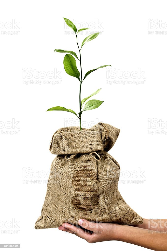 Money Tree/Money Bag With Dollar in Human Hand royalty-free stock photo