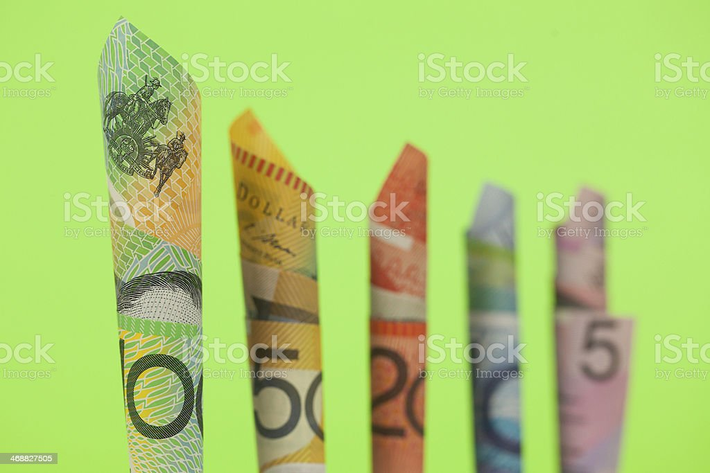 Money Trees stock photo