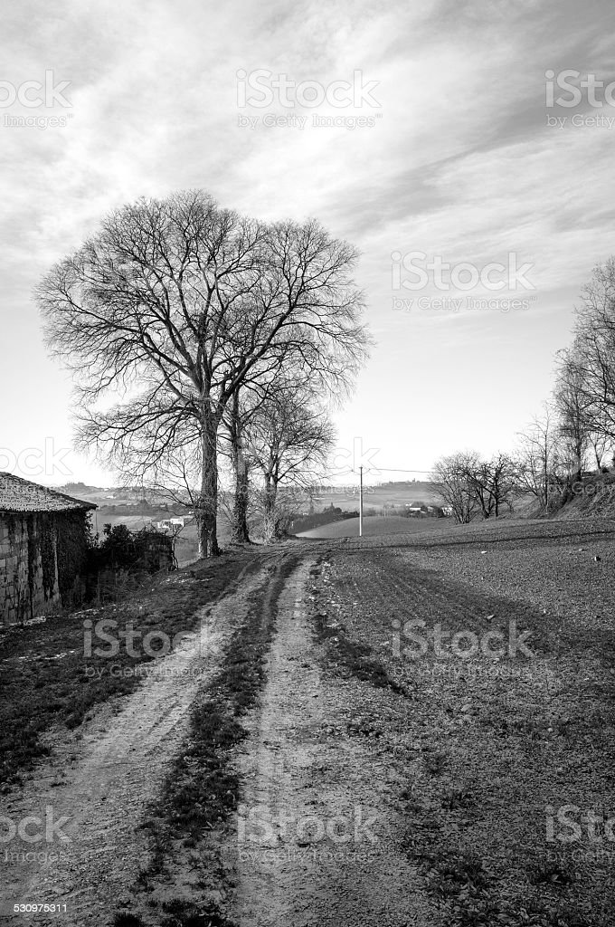 Monferrato, countryside winter panorama. BW image stock photo