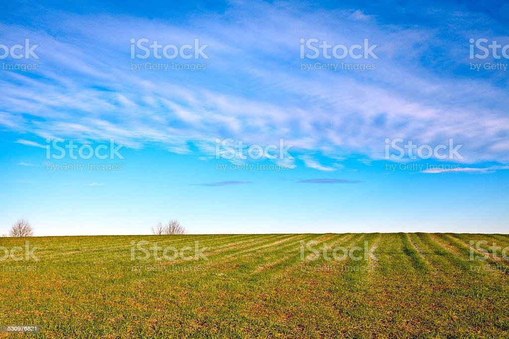 Monferrato hilly region, winter panorama. Color image stock photo