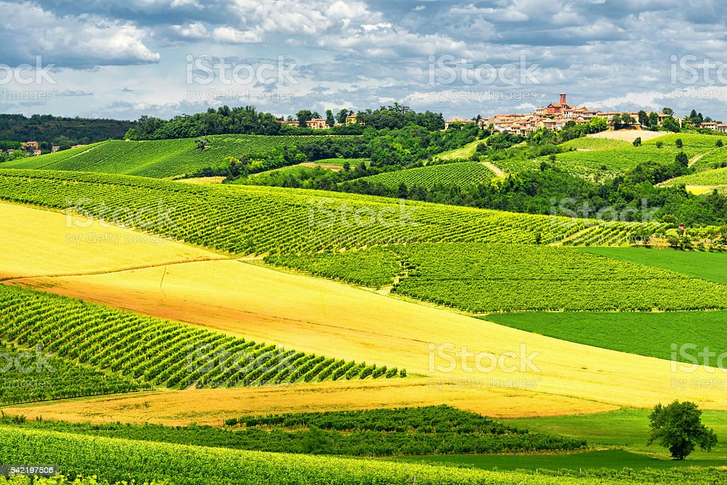 Monferrato (Italy): landscape stock photo