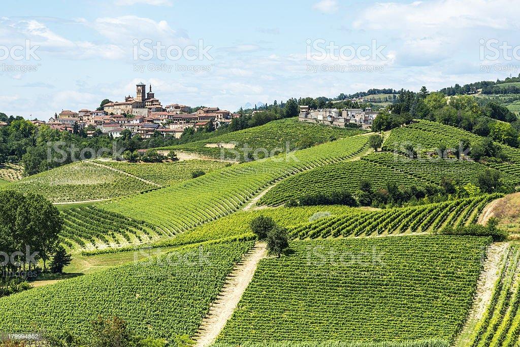 Monferrato (Italy) stock photo